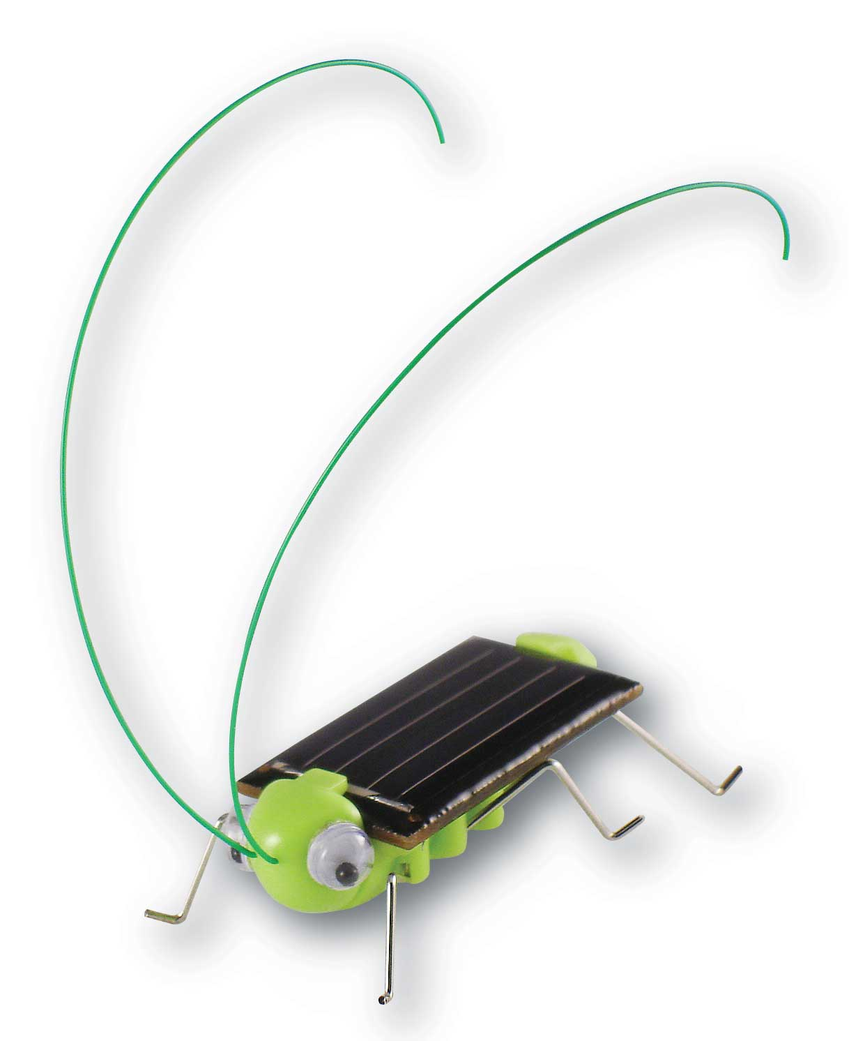 Solar Powered Grasshopper Educational Toy **Free Shipping **